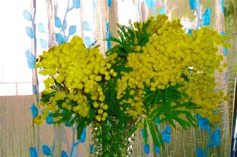 foto 8 marzo fiori fiori 8 marzo stratfordseattle