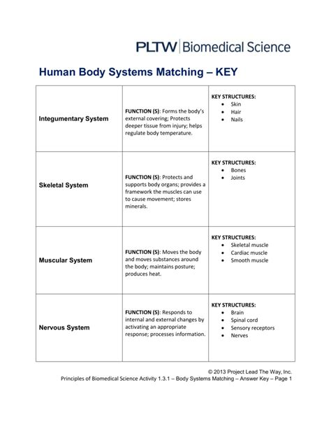 Systems Matching Worksheet Answers by Organ Systems Worksheet Answers The Large And Most