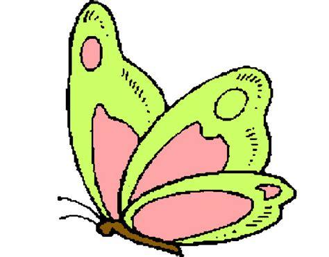 imagenes animales pequeños dibujos pintados de mariposas imagui