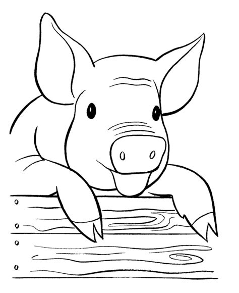 Coloring Page Of A Pig Free Coloring Pages Of Peppa Pigs by Coloring Page Of A Pig