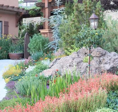 Garten Hohe Pflanzen by Trockenheitsvertr 228 Gliche Pflanzen Wundersch 246 Ne Garten Ideen
