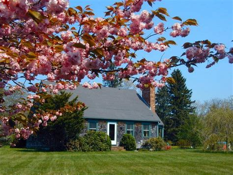 2 cherry tree foxboro ma the hat bed breakfast b b reviews price comparison west tisbury ma tripadvisor