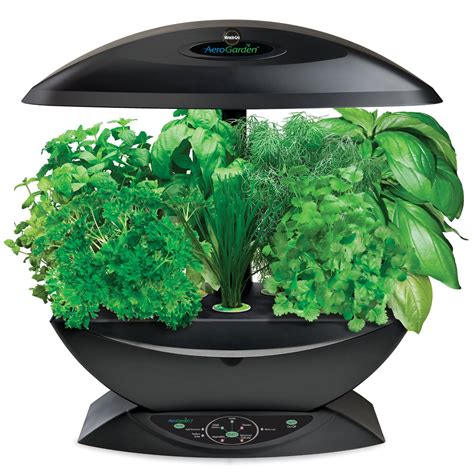 indoor garden kit miracle gro aerogarden with gourmet herb seed kit 99