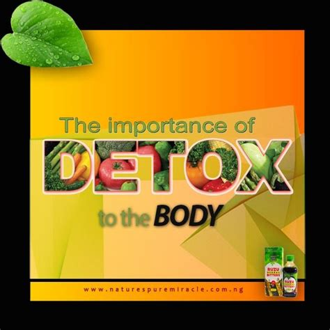 Importance Of Detoxing Your by Importance Of Detoxification To The
