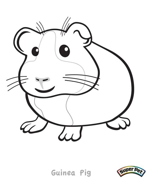 coloring page of a guinea pig guinea pig coloring pages az coloring pages