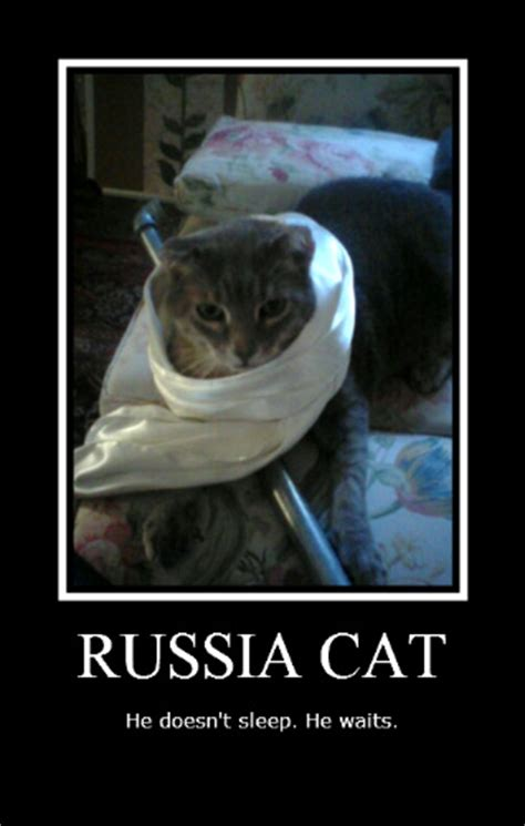Russian Cat Meme - russian cat meme 28 images these poorly translated