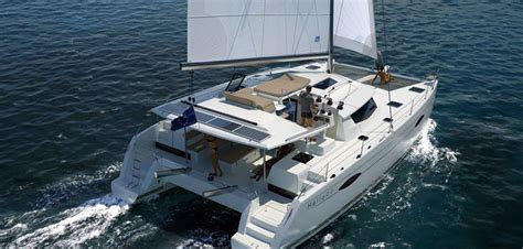 catamaran dolphin cruise gran canaria the best boat trips tours on gran canaria gran