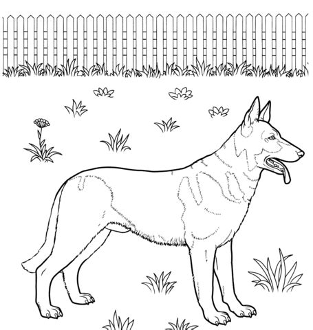 german shepherd coloring page supercoloring com