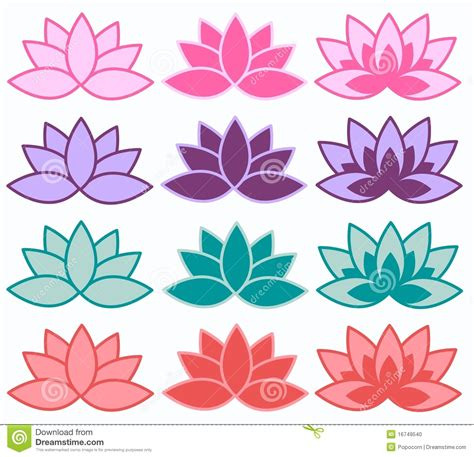 lotus colors lotus flowers in different colours stock photo image