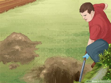 bury dog in backyard 3 ways to bury a pet wikihow