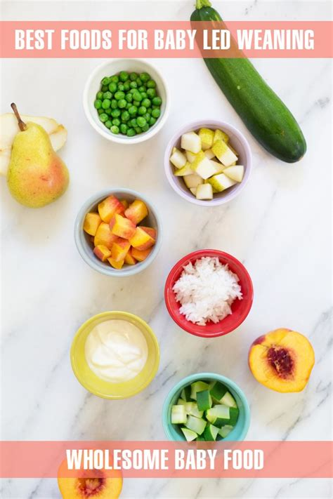 10 Best Foods Your Baby Food Ideas And Recipes For Baby Led Weaning