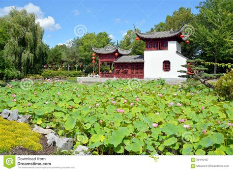 Chinese Garden Stock Photo Image 58440407 Why Are Botanical Gardens Important