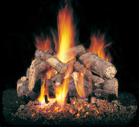 Gas Logs Wood Burning Fireplace by Design Wood Burning Fireplace Inserts