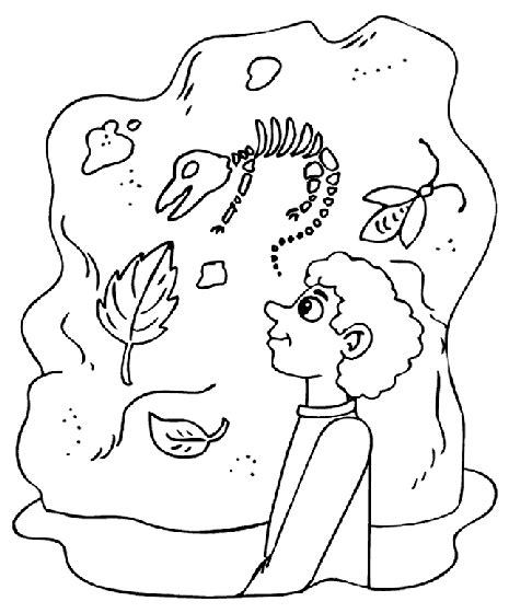 Museum Dinosaurs Coloring Page Crayola Com Fossils Coloring Pages