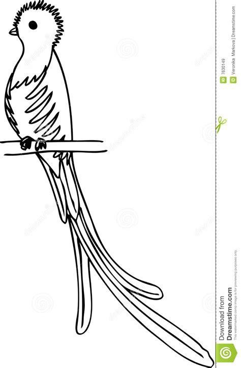 imagenes de quetzalcoatl blanco y negro quetzal stock vector illustration of drawn illustration