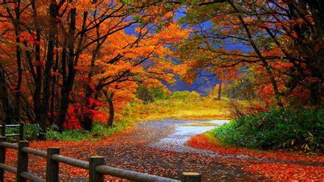 piekne krajobrazy jesieni hd tapety  pobrania