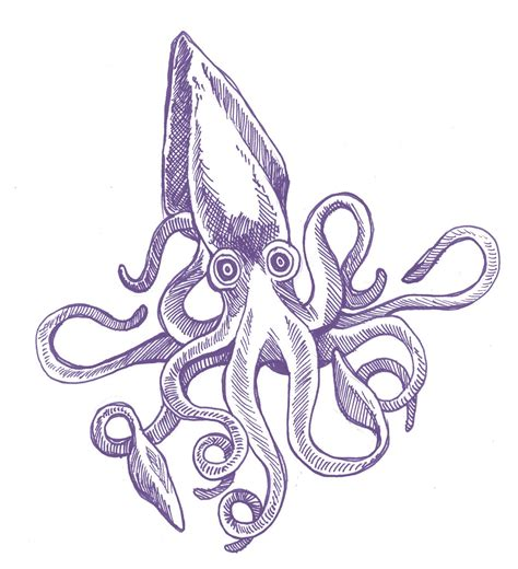 squid ink tattoo squid ink kraken and squid drawing
