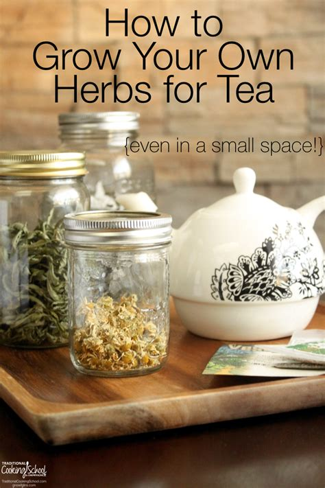 How To Make Your Own Medicinal Detox Teas by How To Grow Your Own Herbs For Tea Even In A Small Space