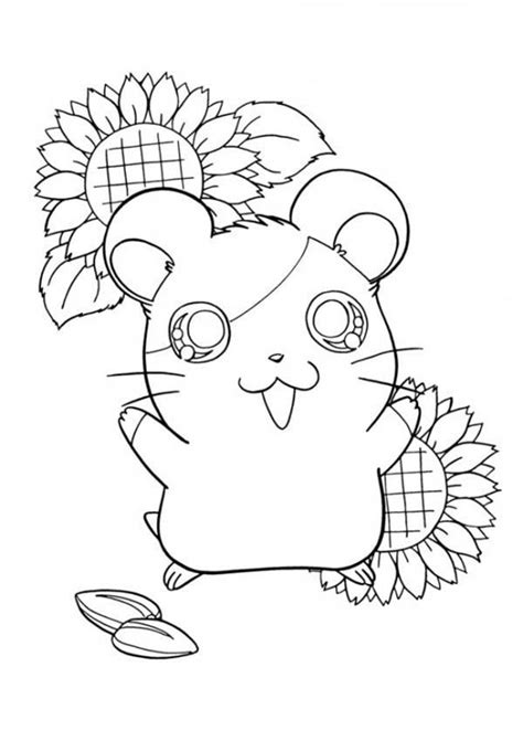 pigs coloring pages coloring home ginnie pig coloring pages coloring home