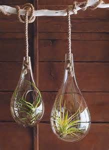mid century modern air hanging planter for tillandsia air