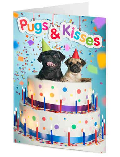 pugs and kisses a wish novel books tigermill publishing greeting cards and gift wrap