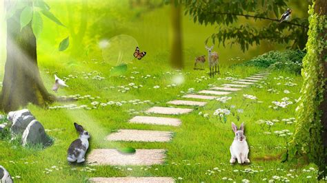 enchanted forest background enchanted forest backgrounds wallpaper cave