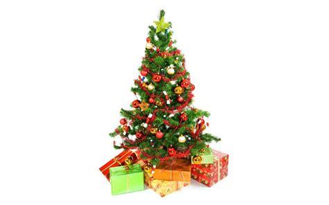 arboles de navidad en alco algoritmo para imprimir en 3d 225 rboles de navidad dejar residuos impresoras 3d impresion