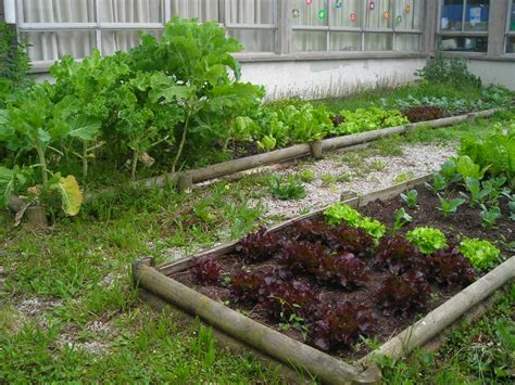 imagenes de jardines escolares huertos escolares en el l b l huertos escolares en el