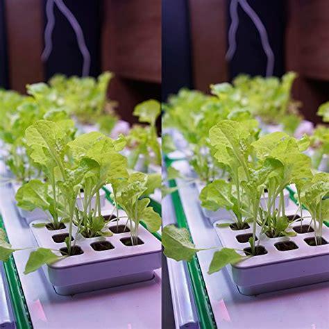 indoor hydroponic herb garden kit hydroponics growing