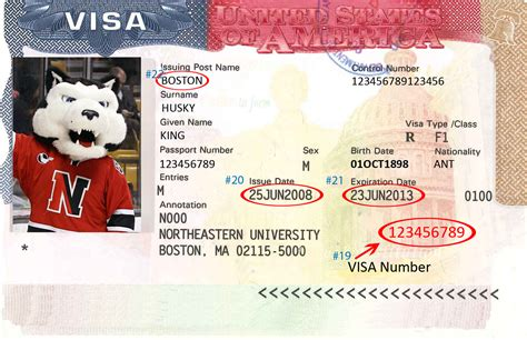 Where Is The Pin Number On A Visa Gift Card - pin us visa number location on image search results on pinterest