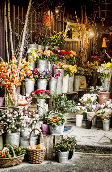 flower shop photograph by applegate