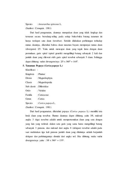 laporan praktikum membuat manisan pepaya laporan praktikum 3 tata letak daun rumus daun dan diagram