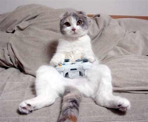 imagenes de niños jugando al gato y al raton sin categor 237 a taller de blogs p 225 gina 37