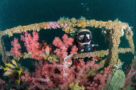 padi dive master padi divemaster divers uae