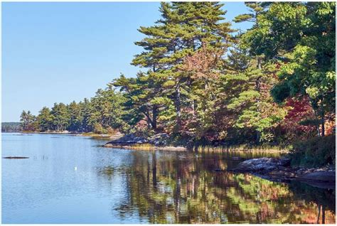lincoln county newspaper maine pemaquid pond preserve grand opening is may 6 the