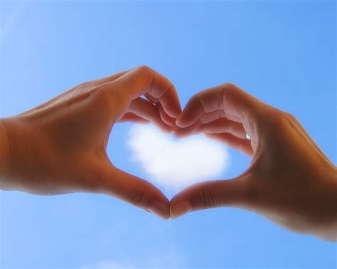 images of love hands all new wallpaper wallpaper love heart shaped hand sunlight