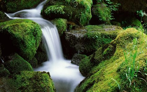 small waterfall in umpqua national forest wallpaper 12773