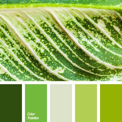 what color is grass grass color color palette ideas
