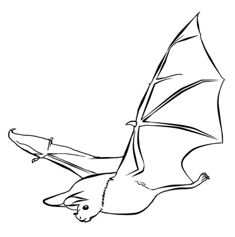 coloring page for bat bat coloring pages coloring pages to print