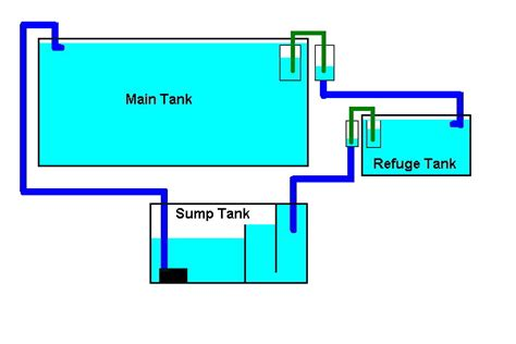 aquarium refuge design marine aquarium sump designs