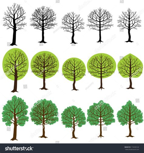 different types of trees stock vector art 635949946 istock types of trees home mansion