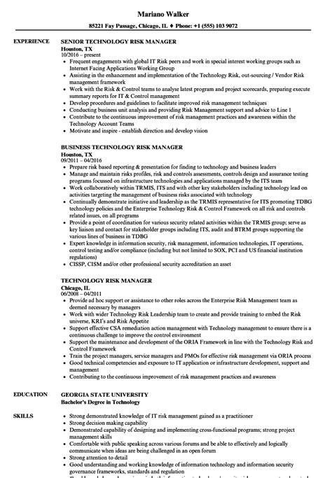 Risk Manager Resume Templates by Enterprise Risk Management Resume Qualifications Section