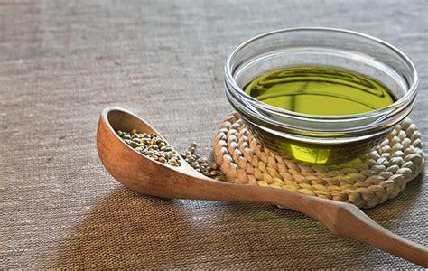 olio di canapa alimentare alghe in cucina e canapa alimentare nuove tendenze alimentari