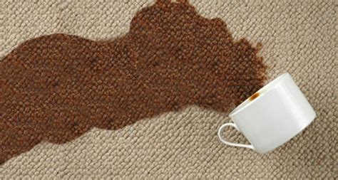 spilled coffee on rug carpet cleaning tips carpet cleaning