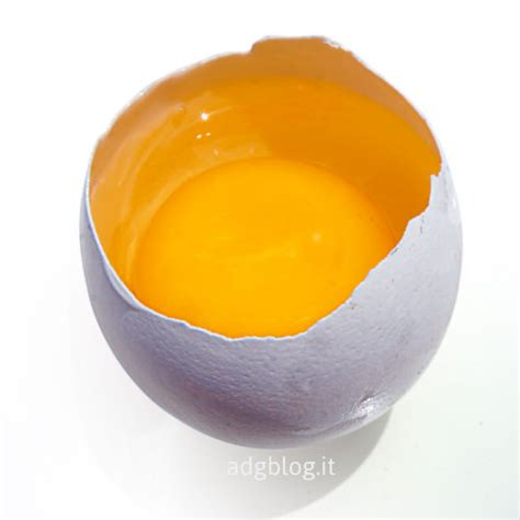 cucinare l uovo italiano con la cucina 4 attivit 224 con l uovo adgblog