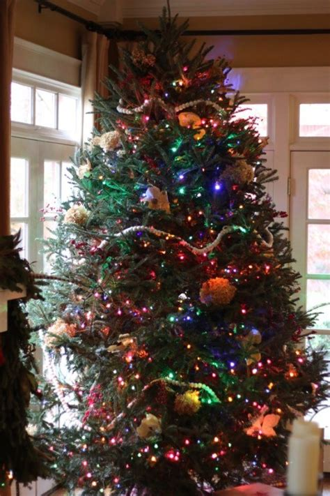 tree with light white lights or multicolored lights for your tree