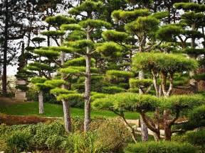 cr 233 ation de jardin zen japonais 224 marseille mobilier