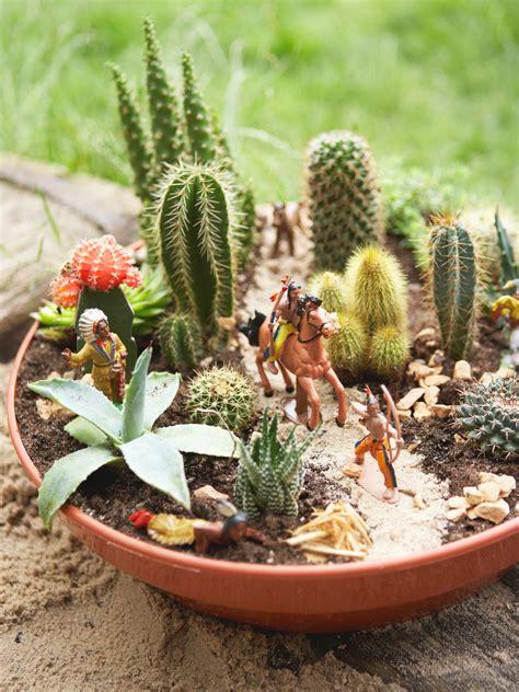 cactus planter how to plant a cactus container garden hgtv