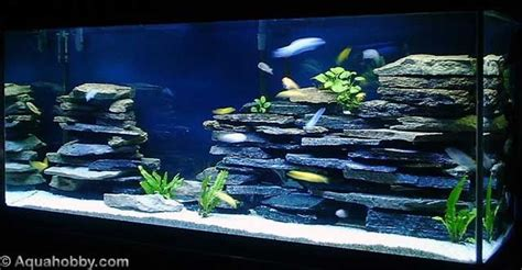 Cichlid Aquascape by Cichlid Tank Landscape Using Aquarium Safe Silicon And
