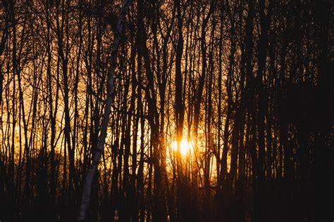wann ist morgen sonnenaufgang die beste zeit zum fotografieren neunzehn72